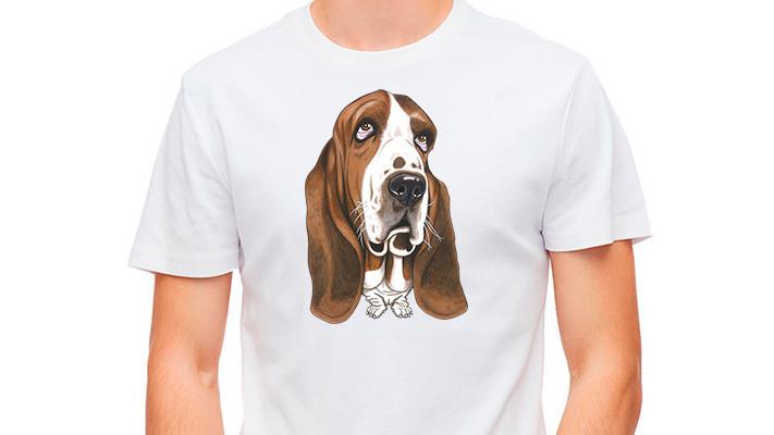 Positiivarit - Basset hound
